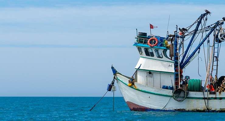 Maritime Fall Protection Training (OSHA)